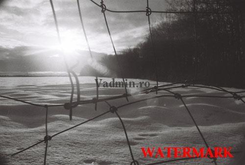 watermark-pe-poza Cum sa protejezi o imagine (poza)?