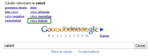 sugestie-calorii-google-522x197 O sugestie interesanta...